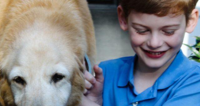 A boy and his dog | Durham Family Portraits | North Carolina