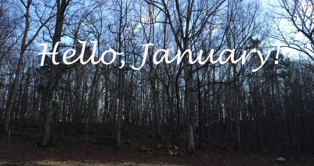 January was a month of celebrations and milestones | January Birthdays | California and North Carolina Photography