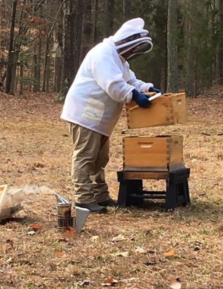 A beekeeper and his bees | Barbara Bell Photography in Chapel Hill, NC